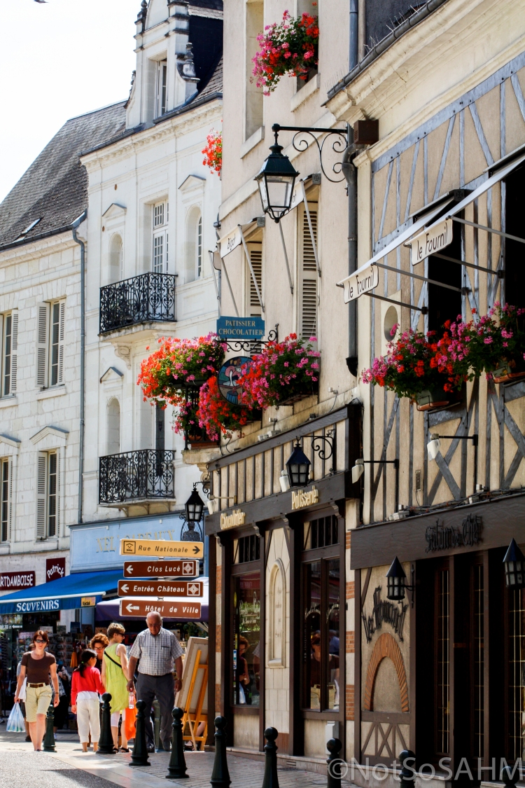 Street in Amboise, France Not So SAHM