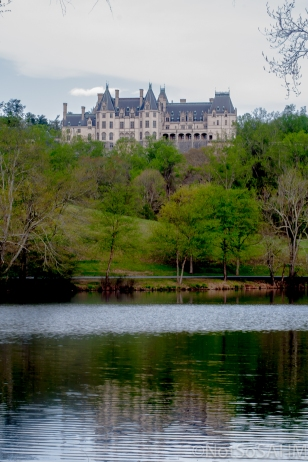 Biltmore from the lagoon