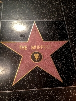The Muppets Star