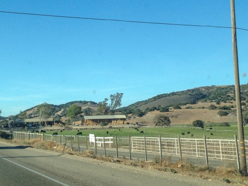 Farmland along the PCH