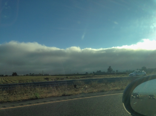 Fog rolling in on the PCH