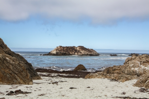 Seal Point on 17 Mile Drive in Pebble Beach CA Not So SAHM