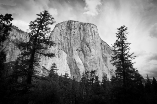 El Capitan framed by two trees Yosemite Valley black and white Not So SAHM