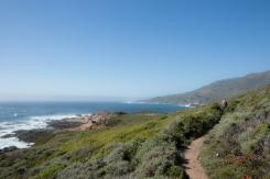 Pathway along the Pacific Coast Highway Big Sur Not So SAHM