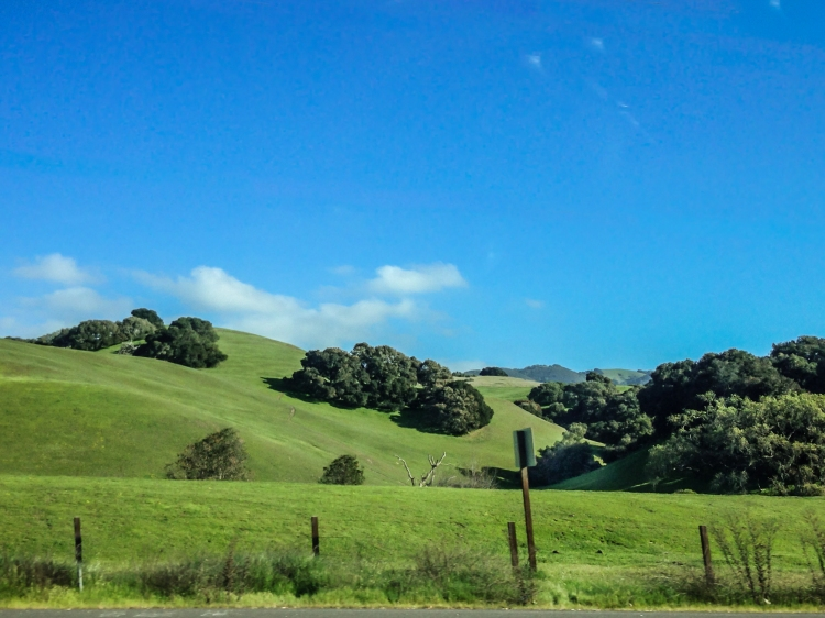 Rolling green hills accented by a deep blue sky near Salinas, California NotSoSAHM