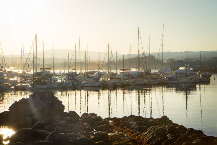 Sunset over boats in the Monterey Bay harbor NotSoSAHM