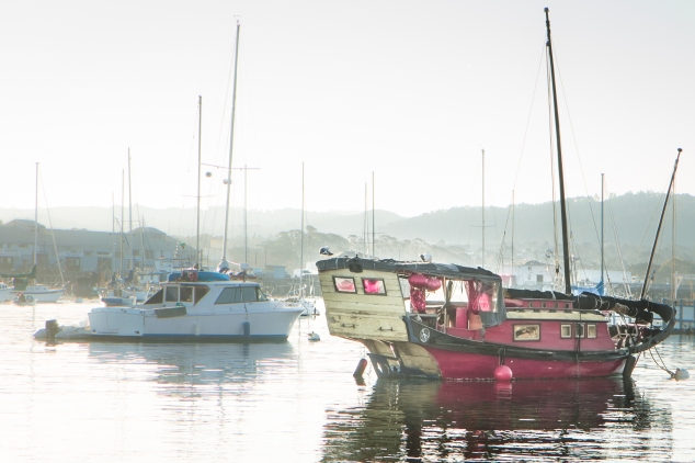 A chinese junk boat sits in the Monterey Bay Harbor in Monterey California NotSoSAHM
