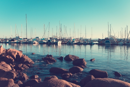 Boats are docked in the Monterey Harbor on a clear morning - NotSoSAHM