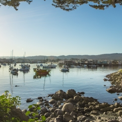 Boats greet the morning in Monterey Bay Harbor NotSoSAHM