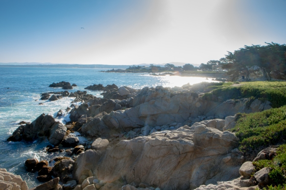 Sun over the waters of Pacific Grove, Monterey, CA NotSoSAHM