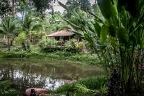 A cabin sits in the jungle of a spice farm in the Manuel Antonio area of Costa Rica NotSoSAHM