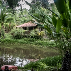 A cabin sits in the jungle of a spice farm in the Manuel Antonio area of Costa Rica NotSoSAHM