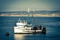 A bottom trawl vessel sits in the Monterey Bay Harbor NotSoSAHM