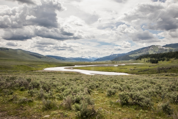 The Lamar River flows through Lamar Valley in the northeast section of Yellowstone National Park NotSoSAHM
