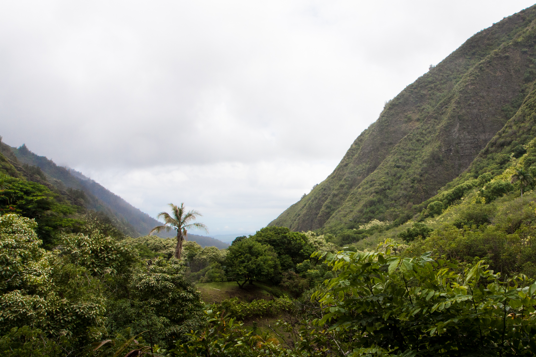 Clouds cover the lush, green Iao Valley on the island of Maui Not So SAHM