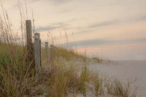 Sea grass and white sand on the beaches of Pensacola Not So SAHM