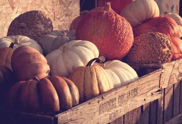 Various gourds, some with bumps, fill a wooden orchard container. Not So SAHM