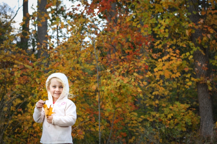 A girl holds a golden leaf and stands in front of a forest of changing leaves. Not So SAHM