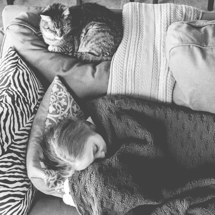 Girl sleeps on couch with cat. Photo by VSD Photography
