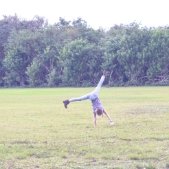 Girl does cartwheel in a field. Photo by VSD Photography