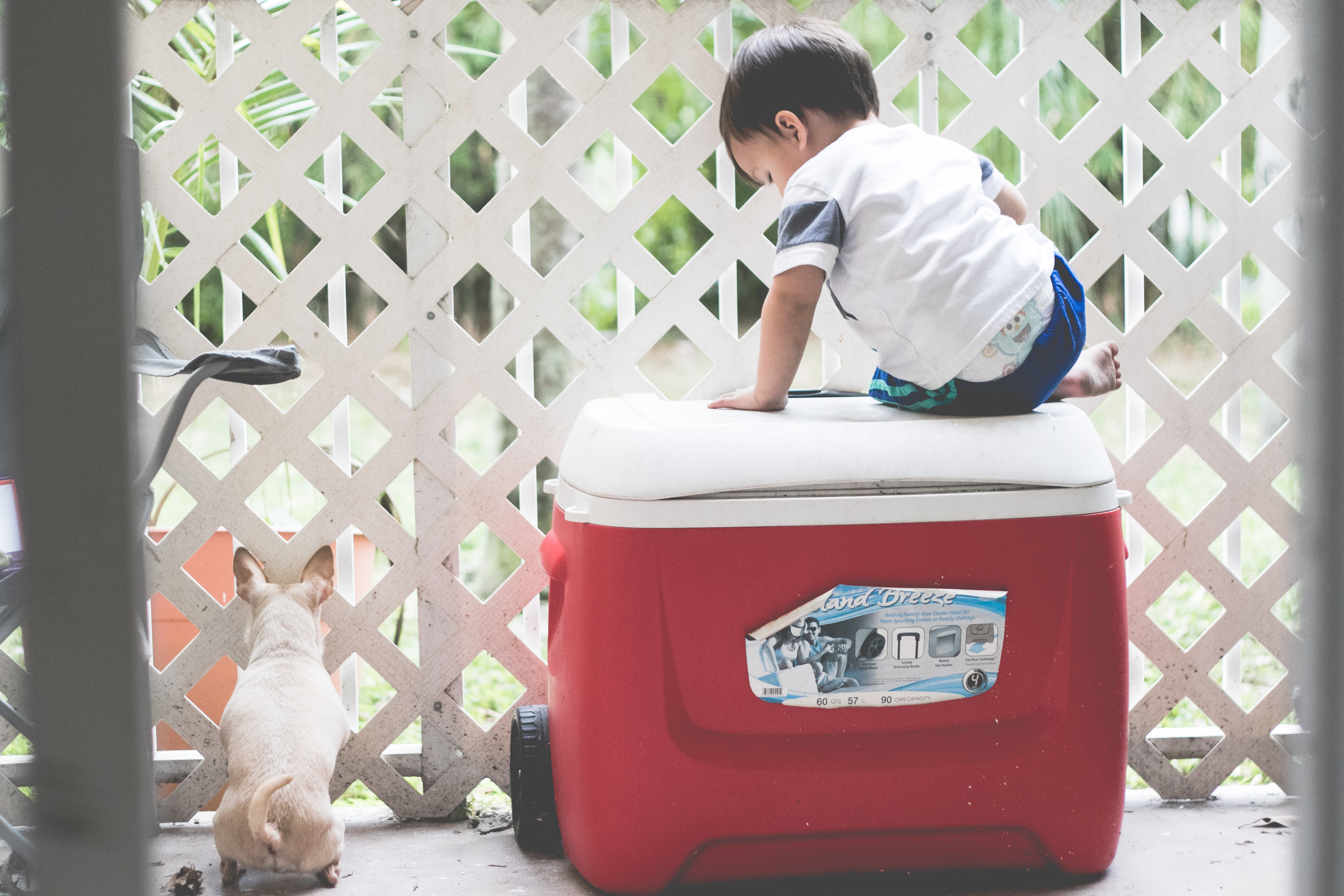 A boy sits on a cooler. Photo by VSD Photography